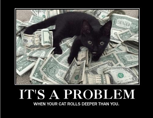 Cats money funny problem - 8435881728