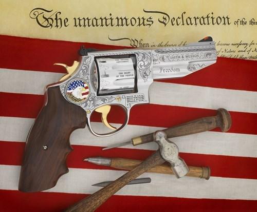 guns second amendment murica - 8435889664