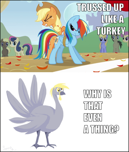 applejack,Turkey,rainbow dash