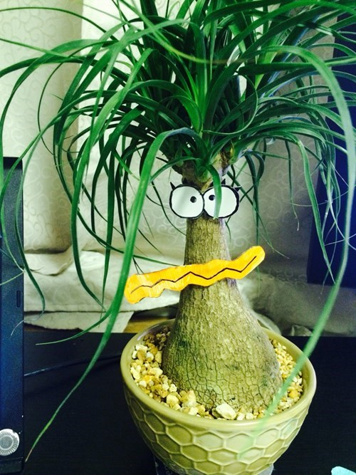 plants cute hacked irl foster's home for imaginary friends - 8436146688
