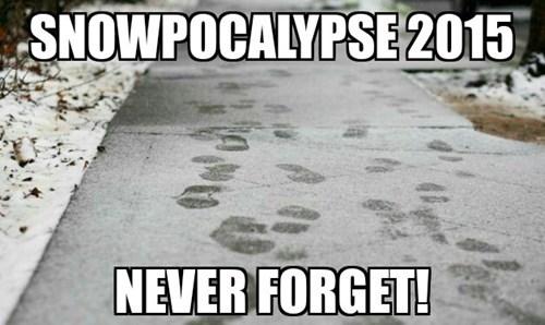 snowpocalypse snowpocalypse 2015 snowmageddon - 8436332800