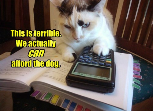 dogs,Cats,math,afford