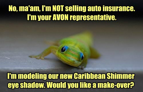 No, ma'am, I'm NOT selling auto insurance. I'm your AVON representative. I'm modeling our new Caribbean Shimmer eye shadow. Would you like a make-over?