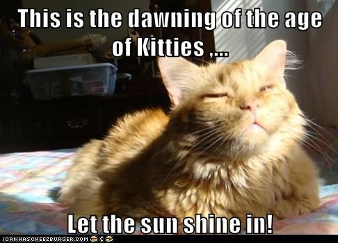 This Is The Dawning Of The Age Of Kitties Let The Sun Shine In Lolcats Lol Cat Memes Funny Cats Funny Cat Pictures With Words On