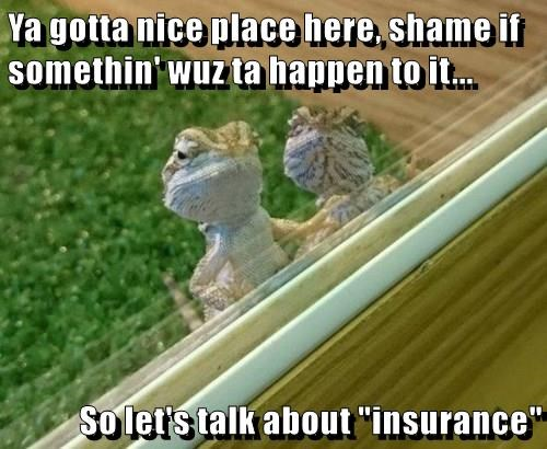 "Ya gotta nice place here, shame if somethin' wuz ta happen to it... So let's talk about ""insurance"""