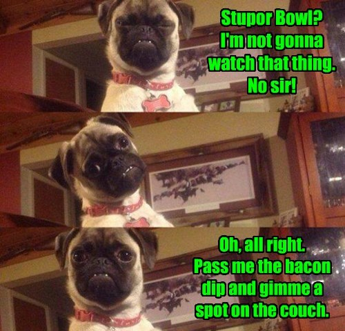 commercial dogs pug super bowl - 8437539328