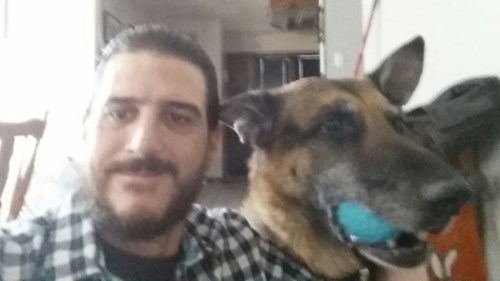 missing dogs german shepherd feels reunited - 8437847040