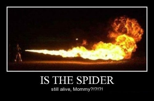 spider Kill It With Fire mommy funny