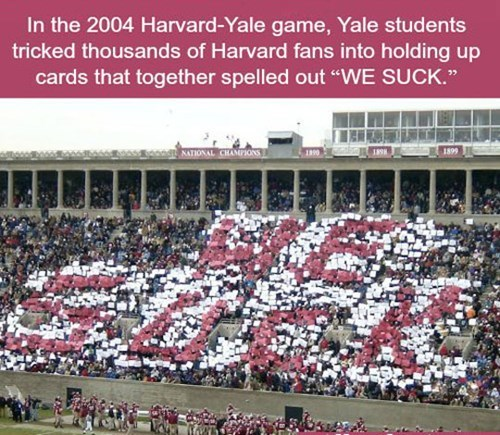 we suck,Yale,harvard
