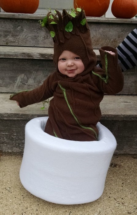 Babies cosplay groot - 8438074624