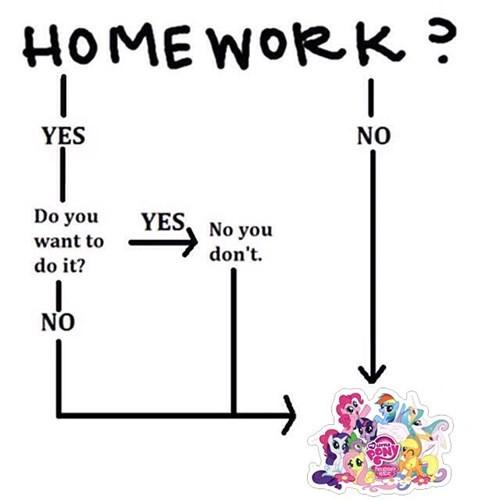 homework flowchart MLP - 8438089984