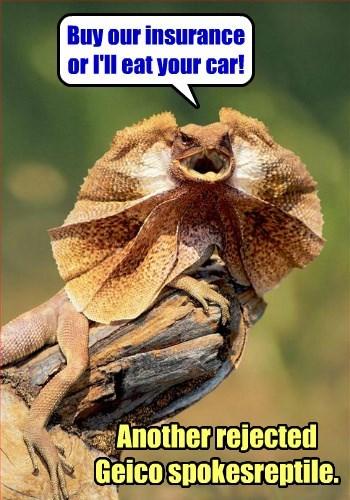 insurance GEICO lizard - 8438104320