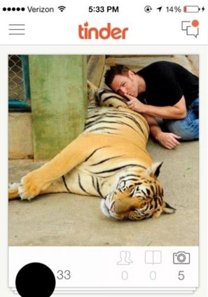 Bengal tiger - Verizon 1 14% D 5:33 PM tinder 33 0 5 LO