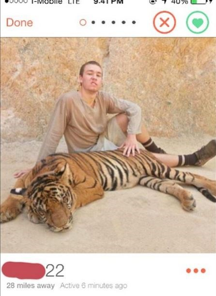 Bengal tiger - Done 22 28 miles away Active 6 minutes ago (X