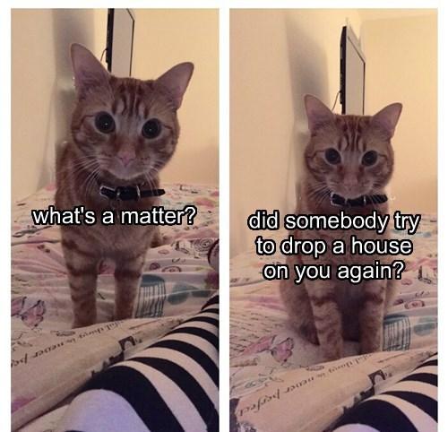 what's a matter?