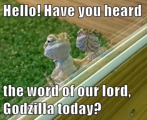 animals bearded dragon godzilla lizard lord - 8438364928