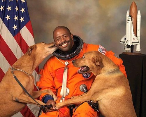 The Best Official NASA Portrait has Been Discovered