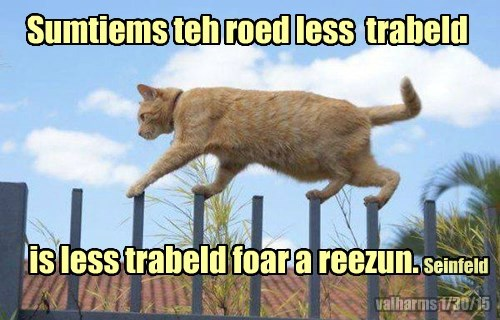 cat road less travelled caption - 8438837504