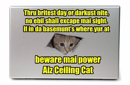 basement,poem,ceiling cat,caption,power