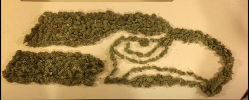 true dank meme of Seattle Seahawks logo made out of weed