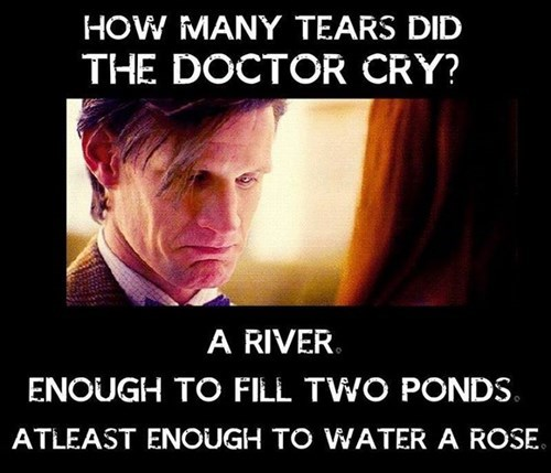 puns 11th Doctor companion crying - 8439751680