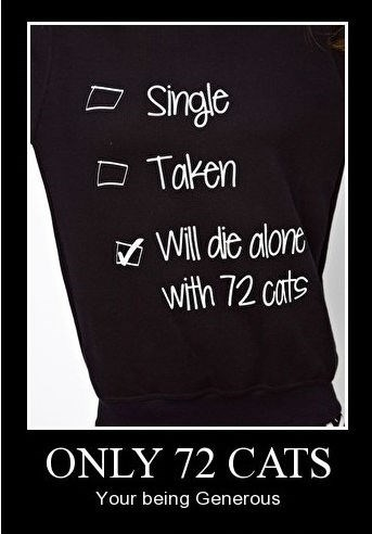 t shirts 72 Cats funny - 8439860736