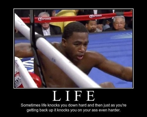 life boxing funny - 8439861760