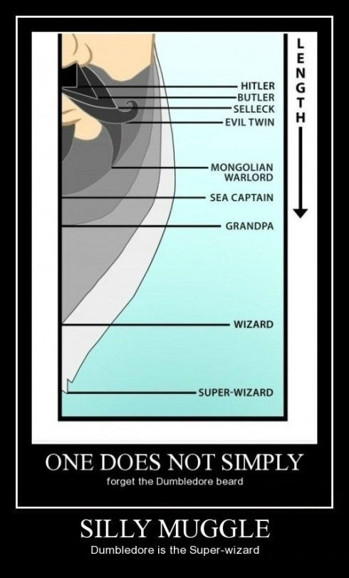 muggle dumbledore wizard funny