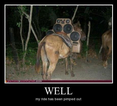 donkey funny pimp my ride - 8439862784