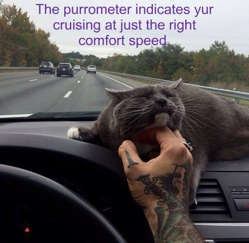 The purrometer indicates yur cruising at just the right comfort speed.