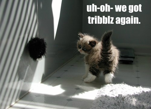 uh-oh- we got tribblz again.