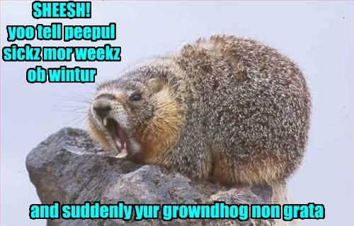 groundhogs day unwelcome winter - 8440240128