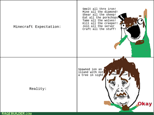 expectations vs reality,all the things,minecraft,Okay
