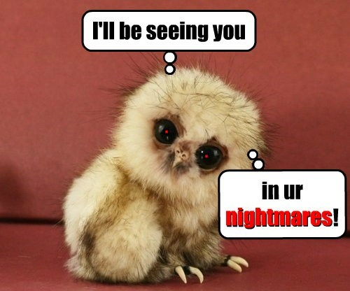 baby animals birds nope evil nightmare squee - 8440557056