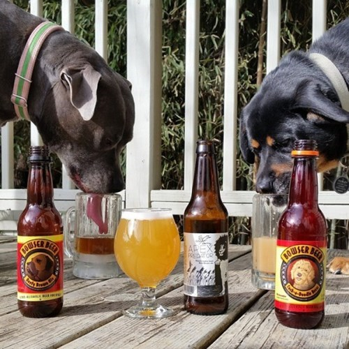 apparently dog beer is a real thing.