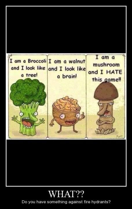 broccoli mushroom walnut funny - 8441026560