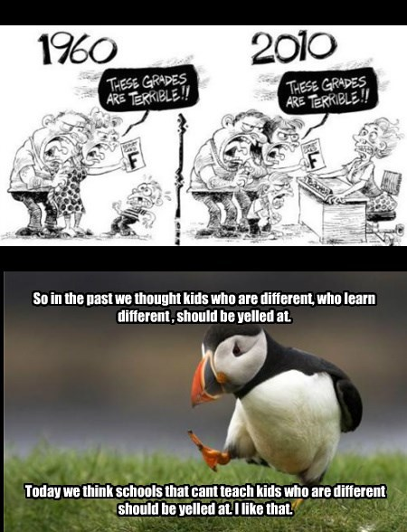 schools,puffins,sad but true,web comics