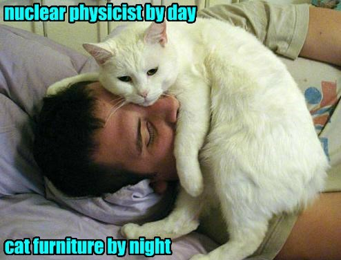 furniture,cat,nuclear,caption,physicist