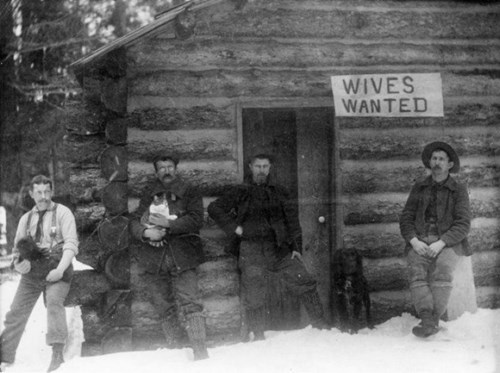 bunch of guys in a cabin want some wives.