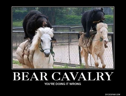 russia,bears,doing it wrong,funny