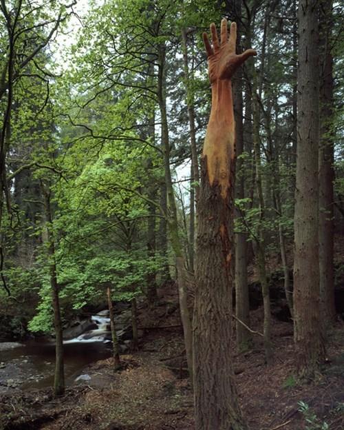 epic-win-photo-sculpture-art-tree
