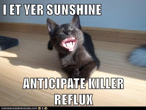 I ET YER SUNSHINE ANTICIPATE KILLER REFLUX