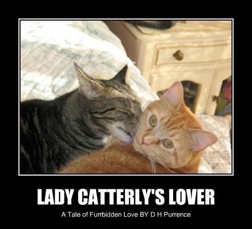 cat forbidden love chatterley lady - 8441711104
