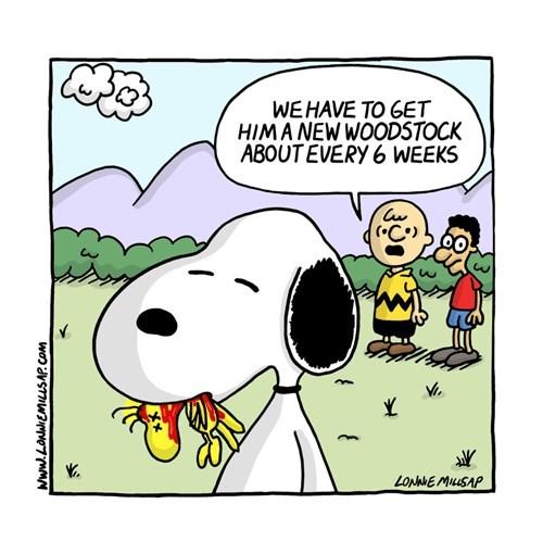 funny-web-comics-snoopys-dark-habit