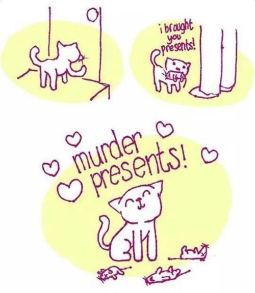 funny-web-comics-a-cats-gift