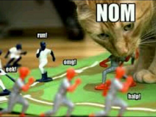 massacre run noms Cats - 8442160896