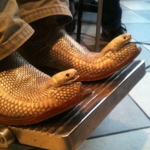 fashion-fail-sometimes-snakeskin-just-isnt-enough