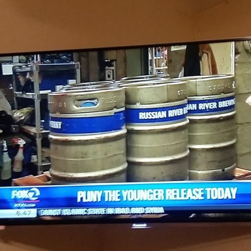pliny the younger is totally news worthy