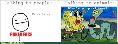 people,SpongeBob SquarePants,talking,poker face