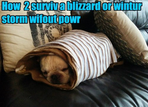 How 2 surviv a blizzard or wintur storm wifout powr